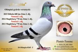 HU-2010-O-365 - Pintér Ferenc