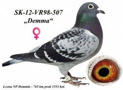 SK-2012-VR98-507 - Blahovský Milan +Dávid
