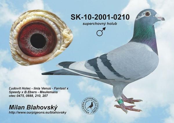 SK-2001-010-210 - Blahovský Milan +Dávid