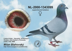 NL-2000-1343099 - Blahovský Milan +Dávid