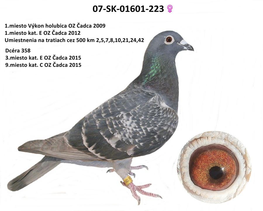 SK-2007-01601-223 - Varmus M + J