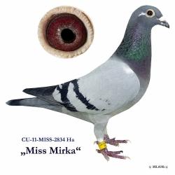 CU-2011-MISS-2834 - Blahovský Milan +Dávid