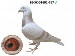 SK-2016-01601-767 - Varmus M + J