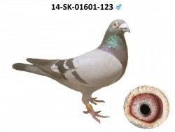 SK-2014-01601-123 - Varmus M + J