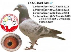 SK-2017-1601-608 - Varmus M + J