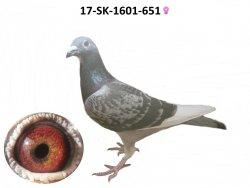 SK-2017-1601-651 - Varmus M + J