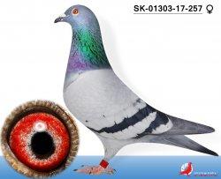 SK-2017-1303-257