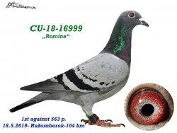 CU-2018--16999