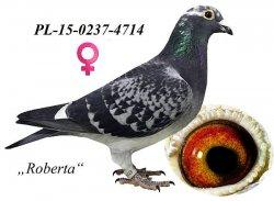 PL-2015-0237-4714