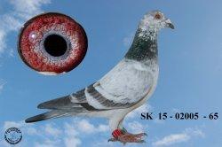SK-2015-02005-65 - Žilka Adrián