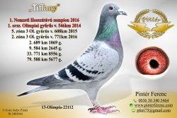 HU-2013-O-22112 - Pintér Ferenc