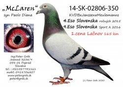 SK-2014-02806-350 - Peter Grék