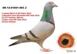 SK-2012-01601-483