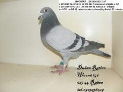SK-2008-01301-337 - Dušan Ratica