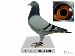 SK-2010-0104-1130 - Alojz Barbírik