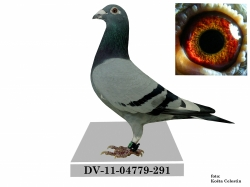 DV-2011-04779-291 - Alojz Barbírik