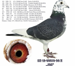 SK-2012-02310-80 - Blahovský Milan +Dávid