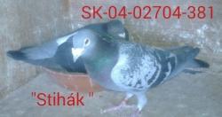 SK-2004-02703-381 - Peter Baňacký