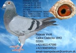 SK-2009-01603-735 - Polacek V+M