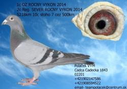 SK-2010-01603-852 - Polacek V+M