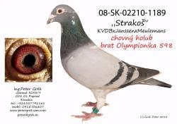 SK-2008-02210-1189 - Peter Grék