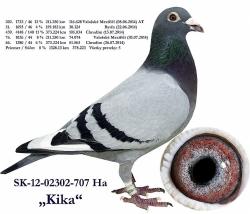SK-2012-02302-707 - Blahovský Milan +Dávid