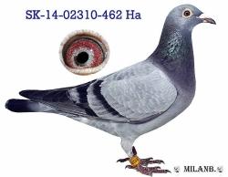 SK-2014-02310-462 - Blahovský Milan +Dávid