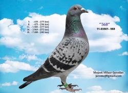 SK-2011-03501-568 - Mojzeš Milan