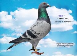 SK-2011-03501-585 - Mojzeš Milan