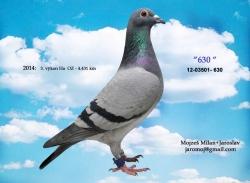 SK-2012-03501-630 - Mojzeš Milan