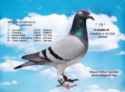 SK-2013-03506-79 - Mojzeš Milan