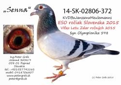 SK-2014-02806-372 - Peter Grék