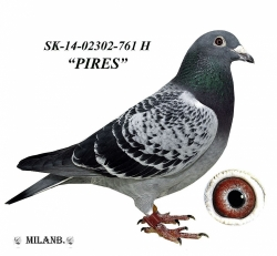 SK-2014-02302-761 - Blahovský Milan +Dávid