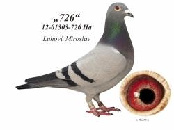 SK-2012-01303-726 - Luhový Miroslav
