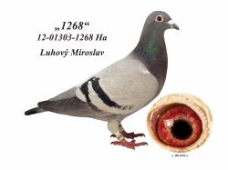 SK-2012-01303-1268 - Luhový Miroslav
