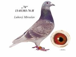 SK-2013-01303-76 - Luhový Miroslav