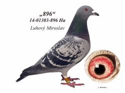 SK-2014-01303-896 - Luhový Miroslav