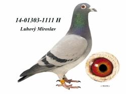 SK-2014-01303-1111 - Luhový Miroslav