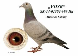 SK-2014-01304-699 - Luhový Miroslav