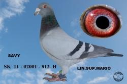 SK-2011-02001-812