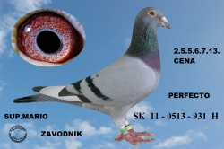 SK-2012-0513-931 - Horváth Peter