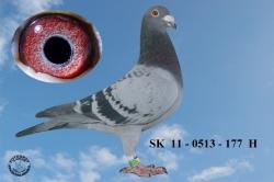 SK-2011-0513-177