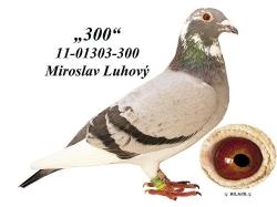 SK-2011-01303-300 - Luhový Miroslav