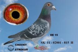 SK-2011-02001-815 - Horváth Peter