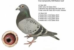 SK-2013-01601-152 - Varmus M + J