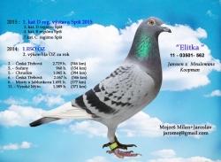 SK-2011-03501-562 - Mojzeš Milan