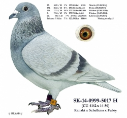 SK-2014-0999-5017