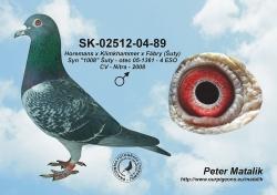 SK-2004-02512-89 - Blahovský Milan +Dávid