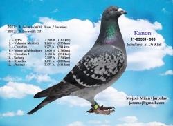 SK-2011-03501-563 - Mojzeš Milan