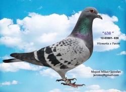 SK-2012-03501-638 - Mojzeš Milan